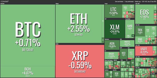 thị trường từ coin360