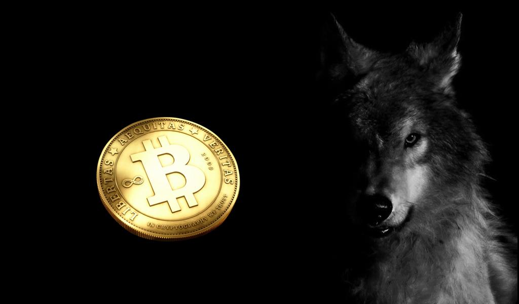 sói cryptocurrency